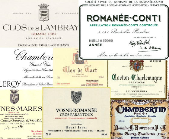 The greatest winemakers of Burgundy